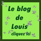 blog de louis